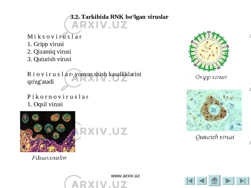 qizamiq virusi